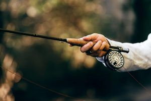 best beginner fly rod