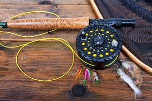best fly line reviews
