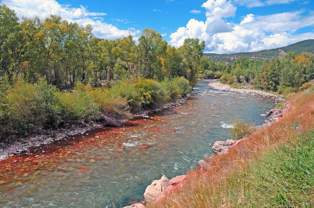 Fly Fishing Colorado (The 2019 guide!) - Fly Fisher Pro