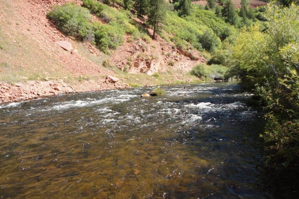 Frying- Pan River