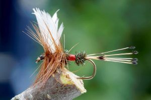 best trout flies