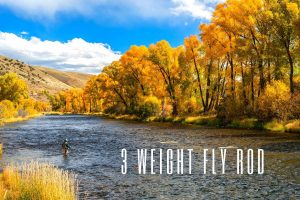 3 weight fly rod