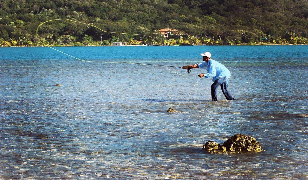 saltwater fly reels