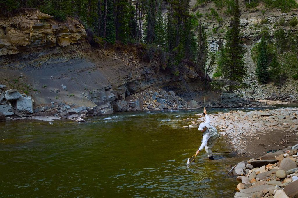 north American fly fishing forums