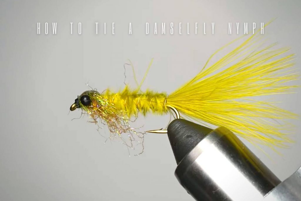 how to tie a damselfly nymph