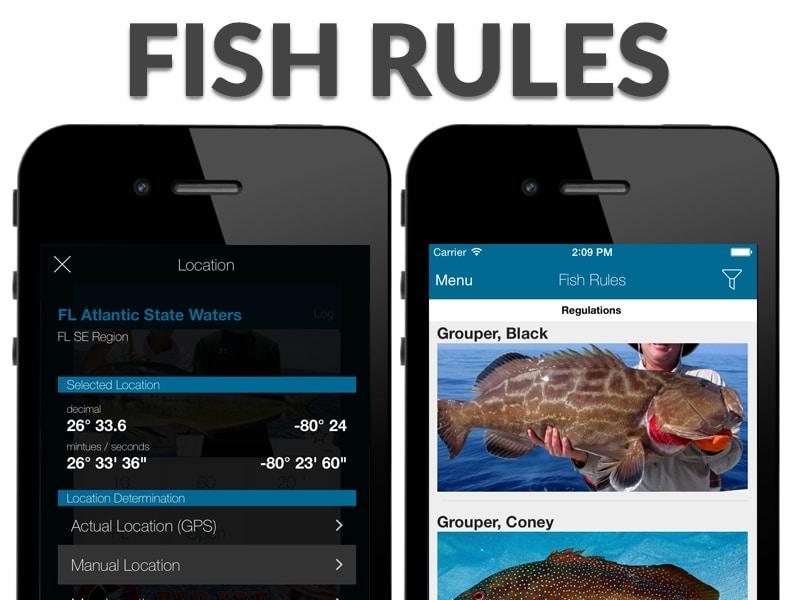 fish rules