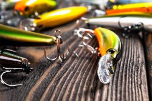 Types of Fishing Lures
