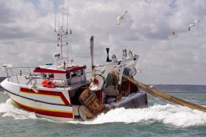 fishing industry statistics