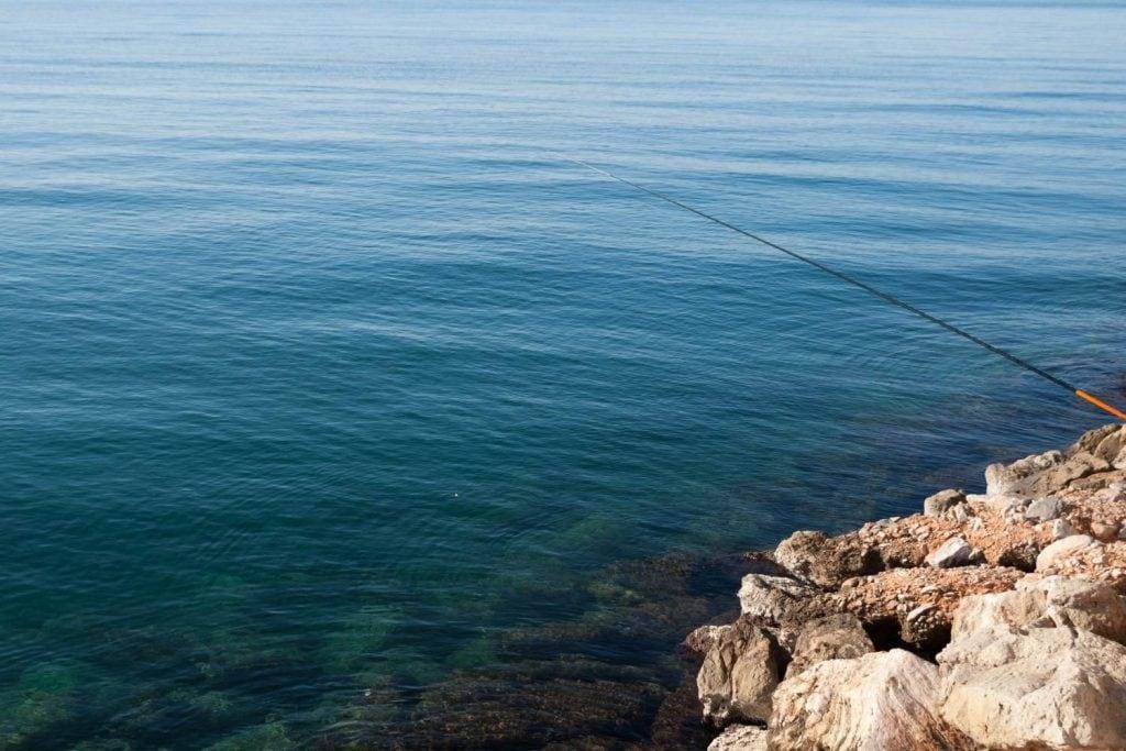 saltwater flyfishing summer
