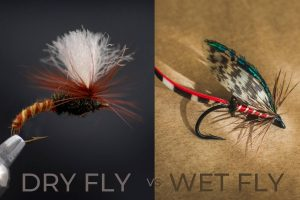 Dry Fly vs Wet Fly Fishing