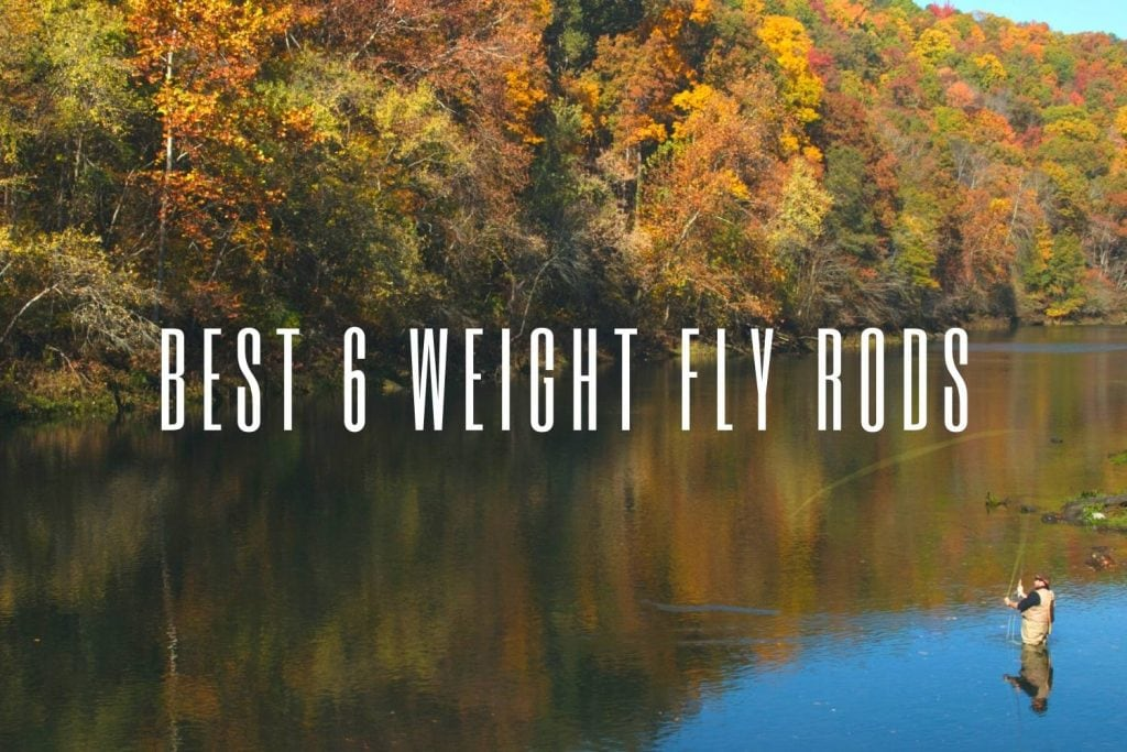 best 6 weight fly rods