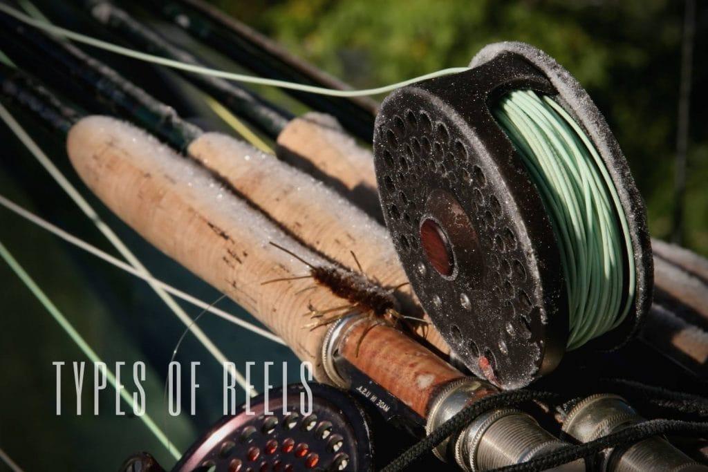 types of reels