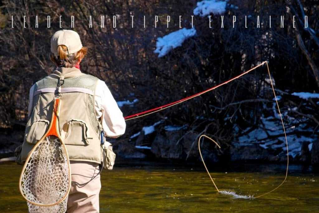 Fly Fishing Leader and Tippet Explained