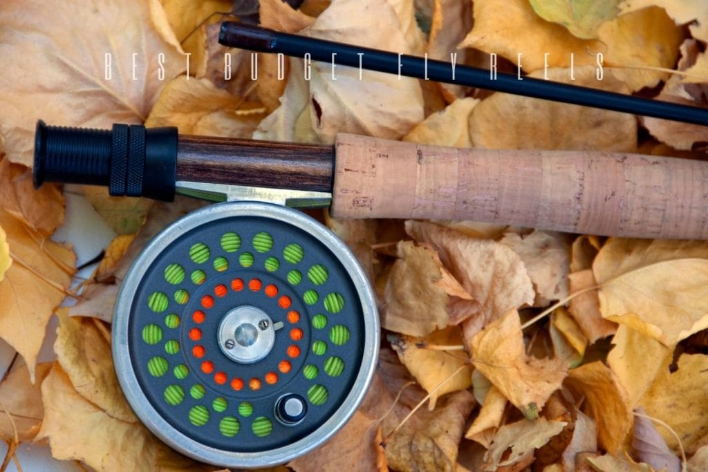 best budget fly reels