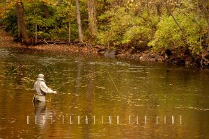 best floating fly line