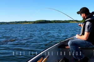 best fly line for bass