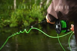 best fly lines for beginners