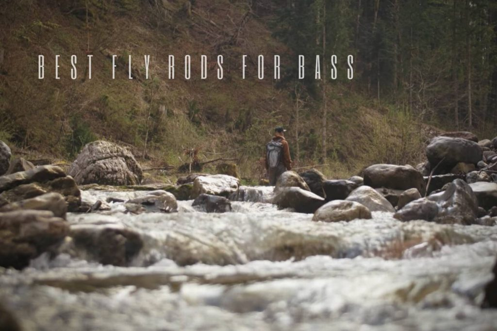 best fly rods for bass