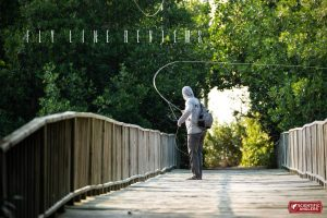scientific anglers fly line review