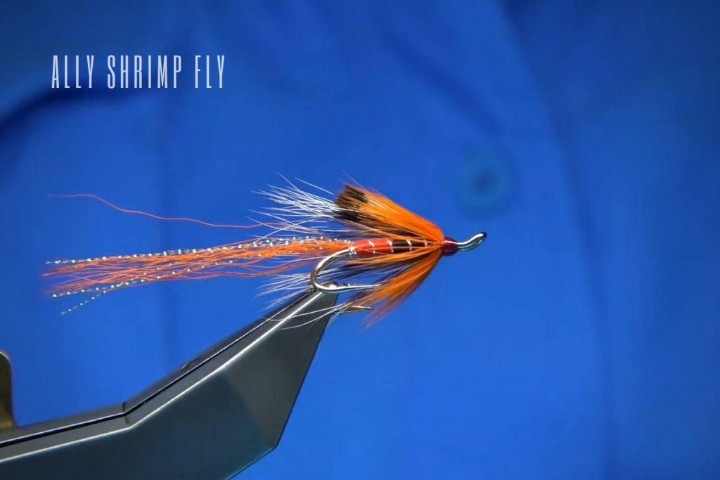 Ally Shrimp Fly