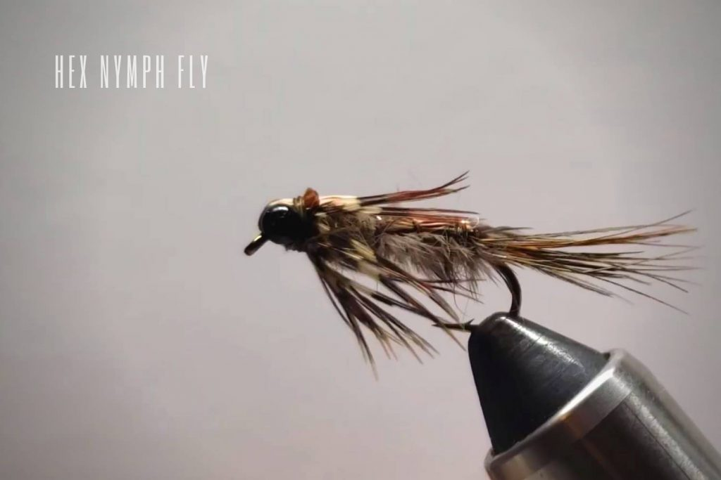 Hex Nymph Fly