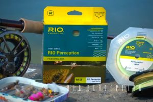 Rio Perception Fly Line Review