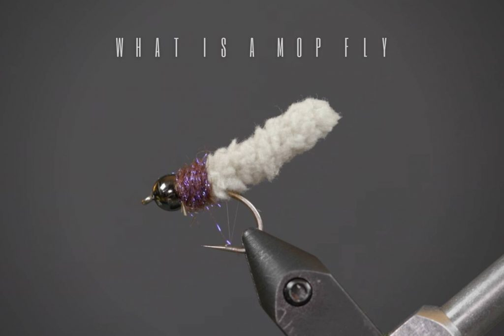 What Is A Mop Fly And How To Fly Fish With It?