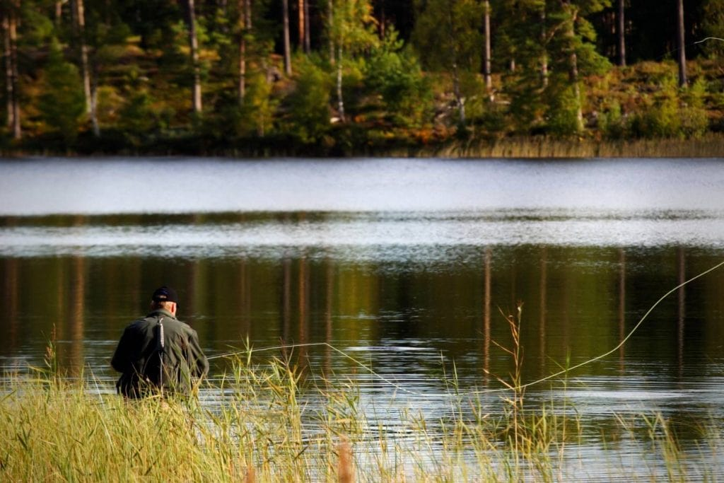 Fly Fishing For Rainbow Trout On Still Waters