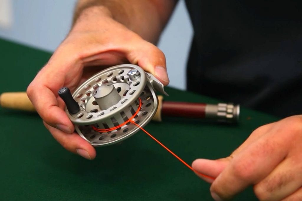 How often should anglers replace their fly lines