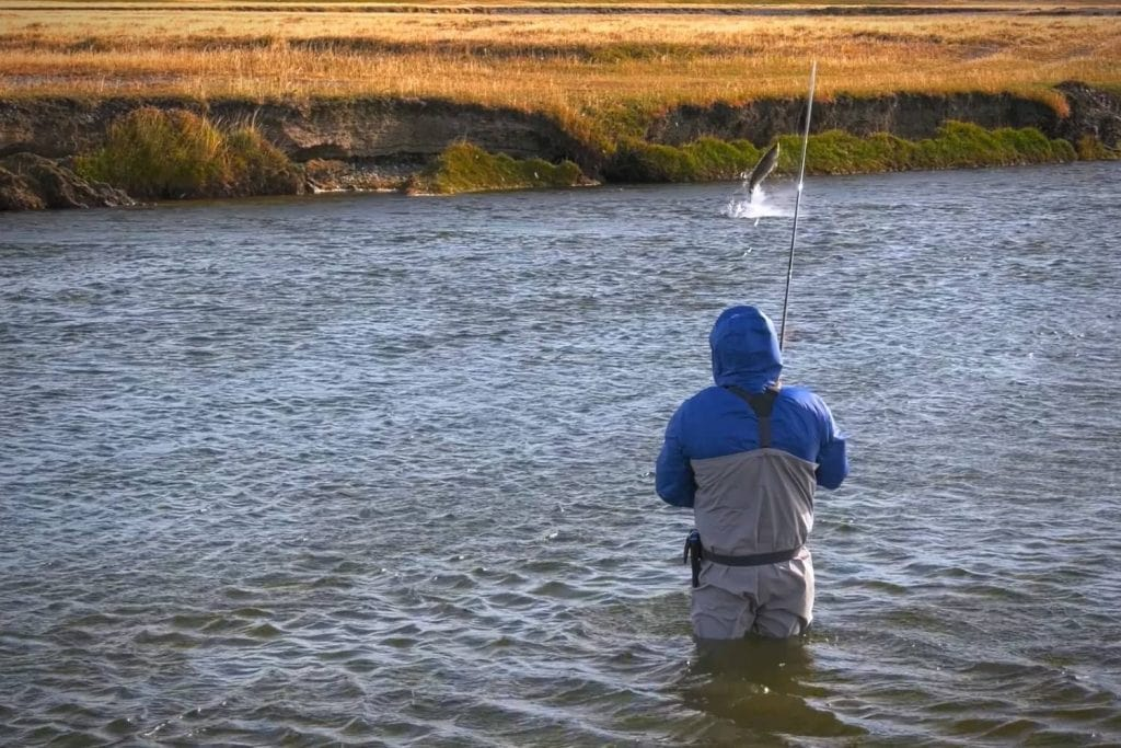 Types Of Fly Fishing