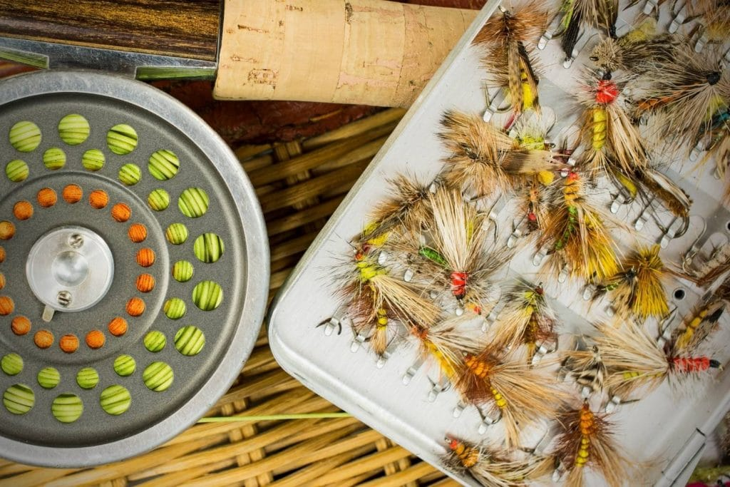 Where To Find The Cheapest Flies flying out