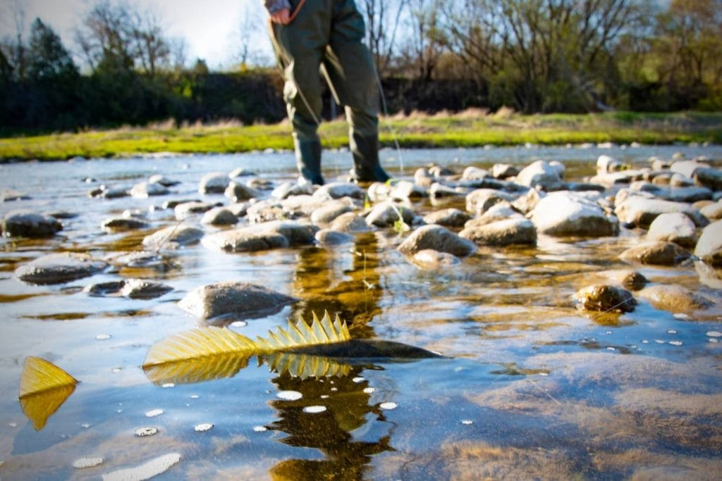 Where to target smallmouth bass