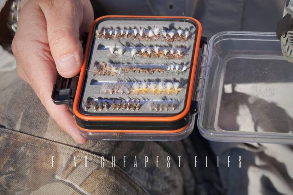 where to find cheapest flies