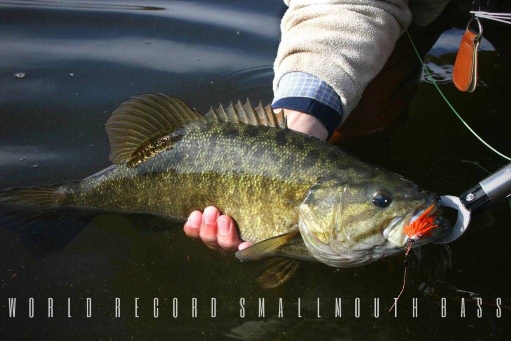 world record smallmouth bass