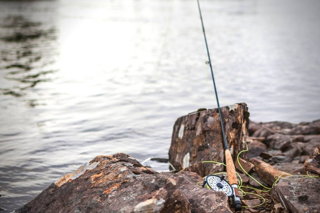 world record smallmouth bass on a fly rod
