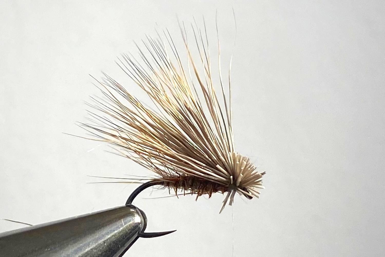 How to Tie Elk Hair Caddis Fly step 10