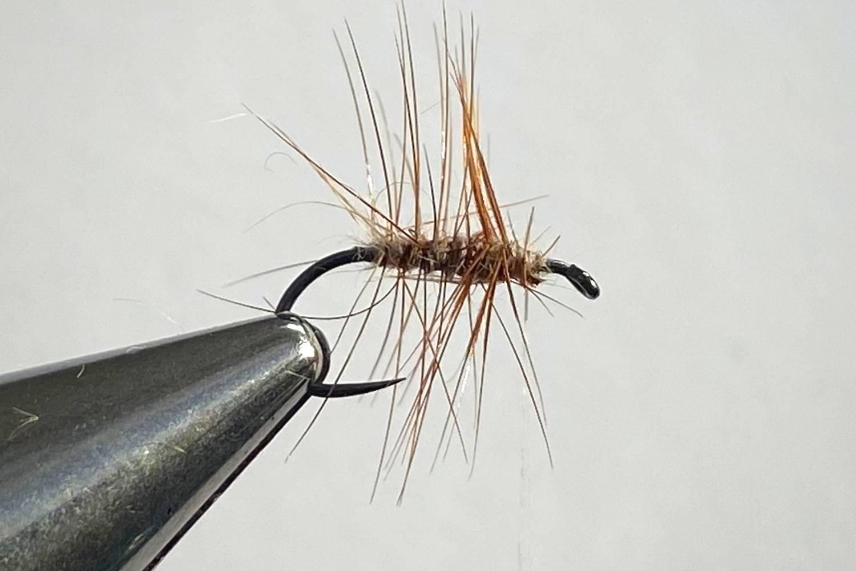 How to Tie Elk Hair Caddis Fly step 6