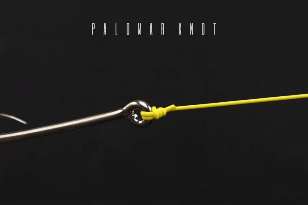the palomar knot
