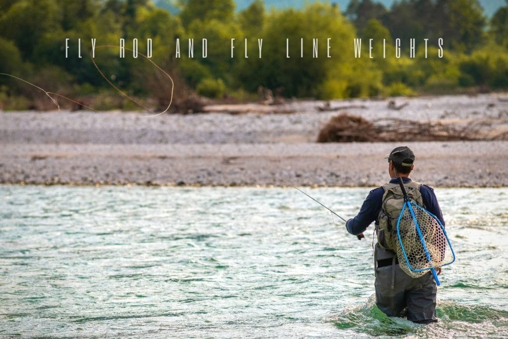 Fly Rod and Line Weights Explained