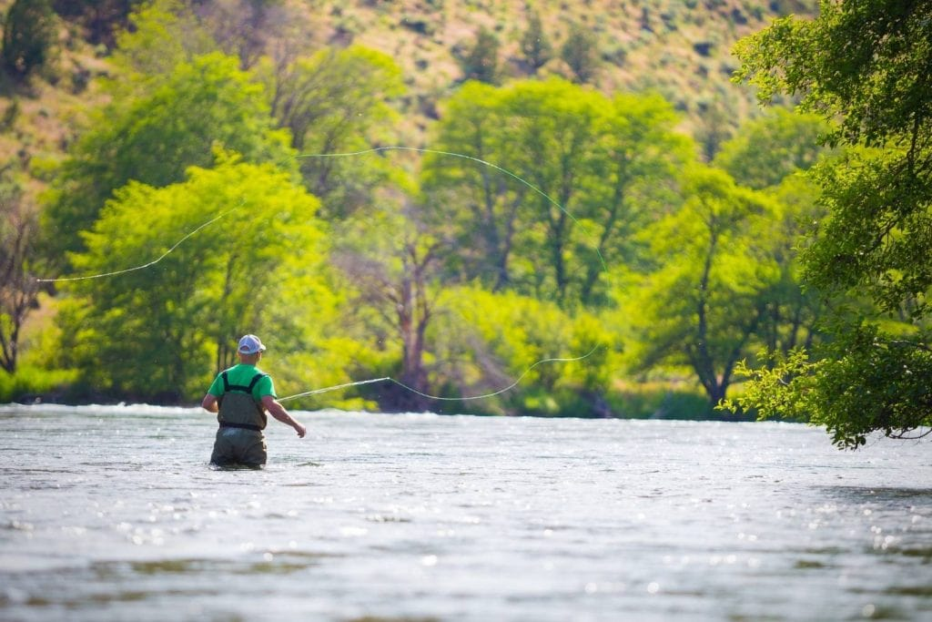 How do you pick the right fly rod weight for the species you want to catch