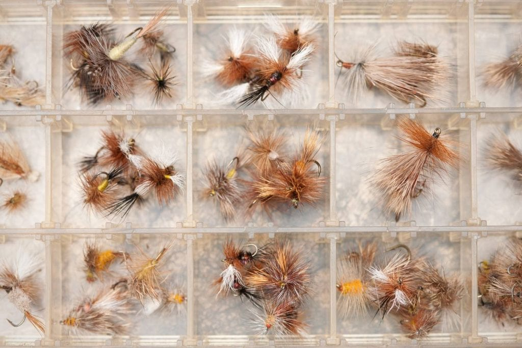 Picking The Right Fly