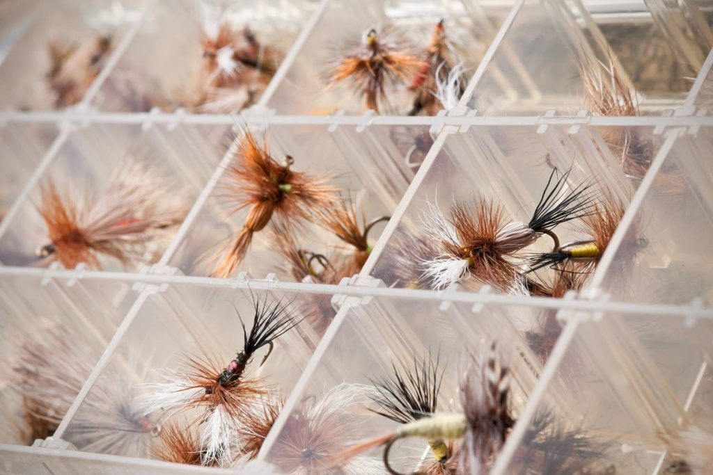 What Is Dry Fly Fishing