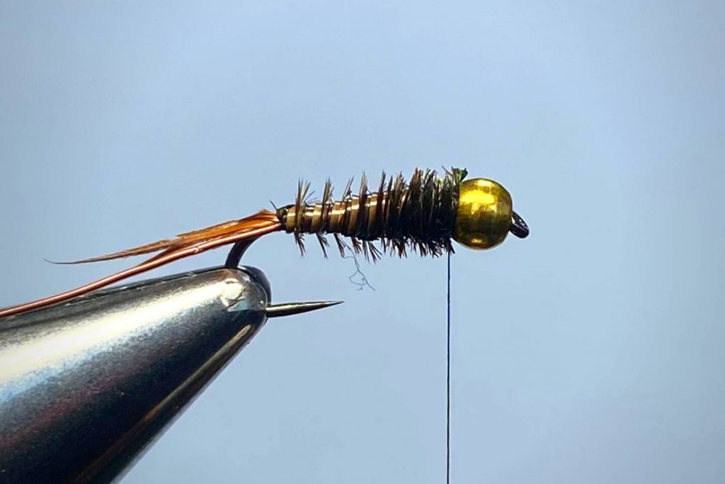 How To Tie A Prince Nymph Step 5