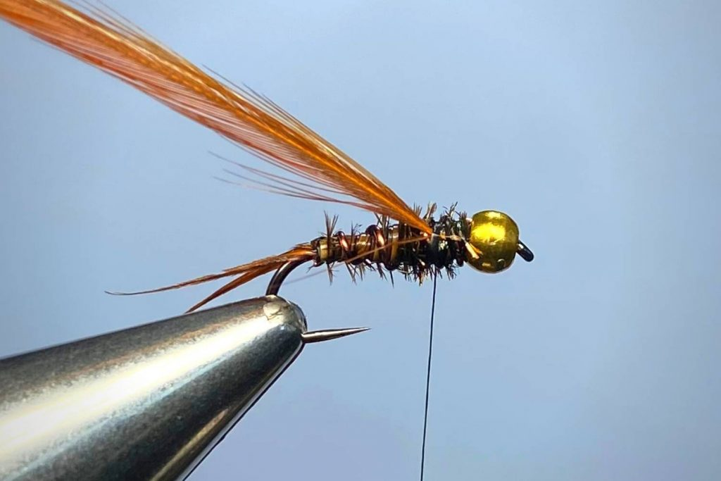How To Tie A Prince Nymph Step 6