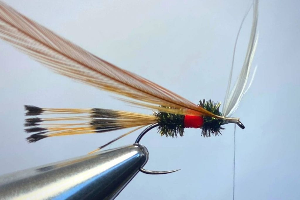 How to tie a Royal Coachman Fly Step 12
