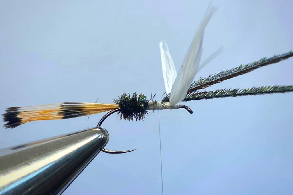 How to tie a Royal Coachman Fly Step 8