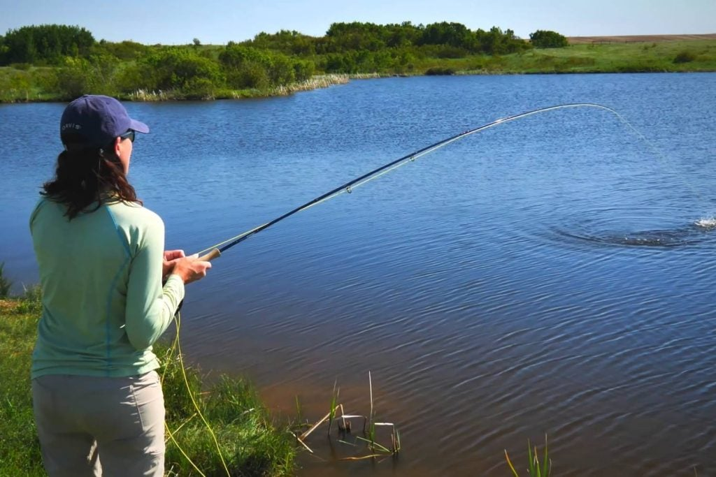Stillwater Fly Fishing From The Shore