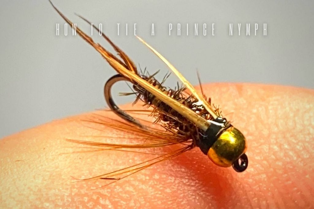 how to tie a prince nymph